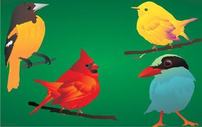 4 beautiful & detailed birds!