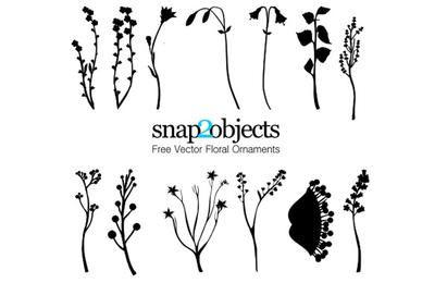 13 ornamentos florais vetoriais