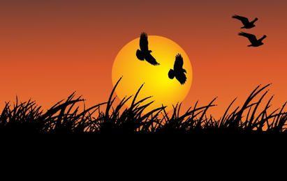 Sonnenschein mit fliegenden Vögeln