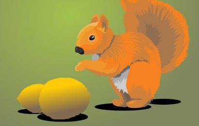 Ardilla con limones