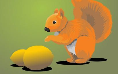 Squirrel with Lemons