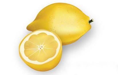 Realistic chopped lemons