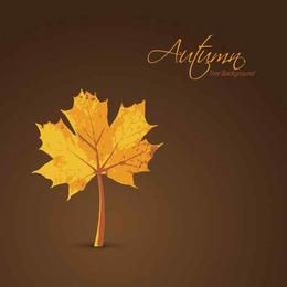 Planted Maple Leaf Autumn Background