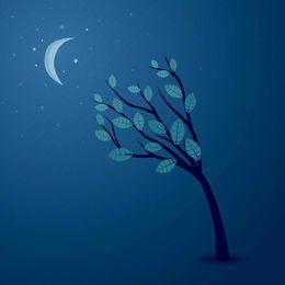 Árbol abstracto de medianoche