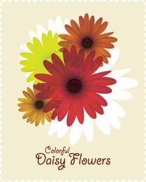 Colorful Daisy Flower Card
