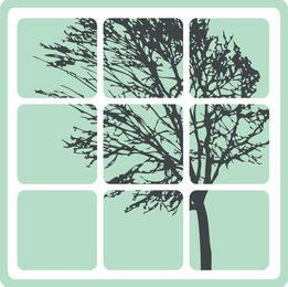 Tree with Window Frame