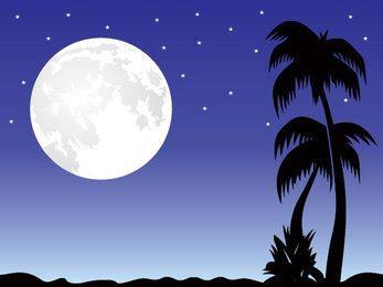 Romantic Moonlight Night Scene