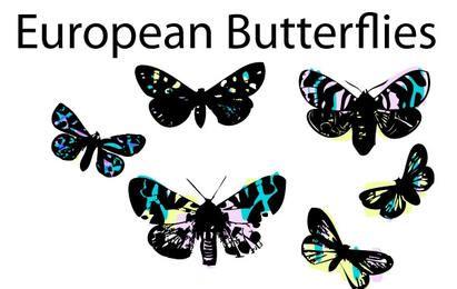 Conjunto de mariposas de vitral