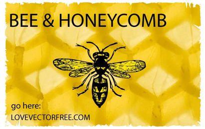 Abelha e favo de mel