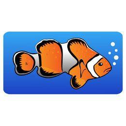 Vector de pez payaso