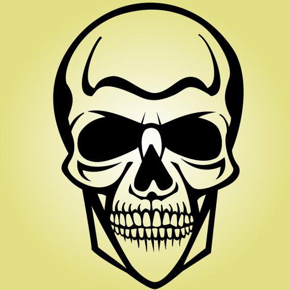 Black & White Human Cranium